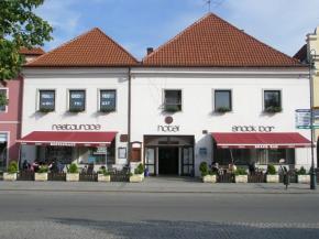 Hotel Český Dvůr - Beroun