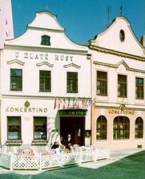 Hotel**** Concertino - Zlatá husa - Jindřichův Hradec