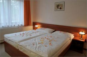 Hotel Alexis - Praha