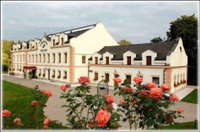 Hotel Romantický Mlýn Karlštejn - Karlštejn