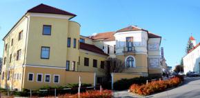 Hotel u brány - Uherský Brod