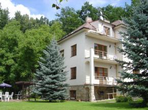 Hotel Villa Conti - Písek