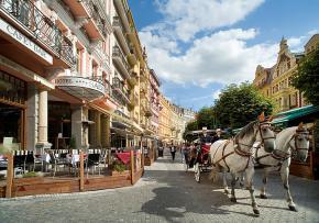 Hotel Salvator - Karlovy Vary