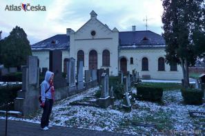 Brno Jewish Cemetery