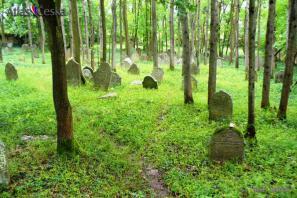 Židovský hřbitov - Telice