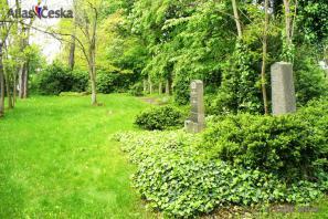 Židovský hřbitov - Holice v Čechách