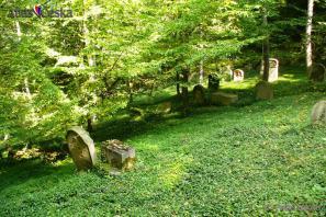 Židovský hřbitov Hřešihlavy
