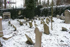 Židovský hřbitov Nová Včelnice