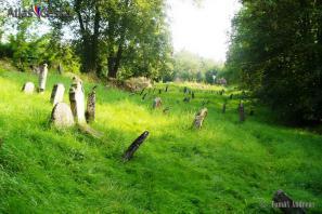 Židovský hřbitov Švihov