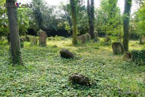 Židovský hřbitov Terešov