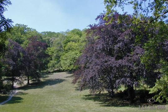 Zahrada Kinského