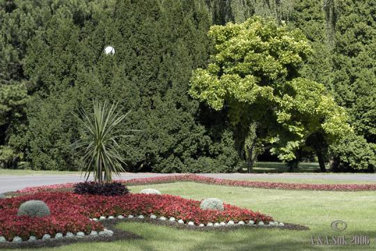 Zahrada Královská