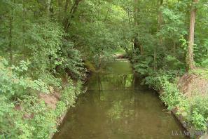 Dalejský potok