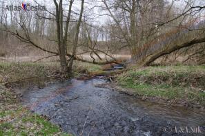 Pitkovický potok