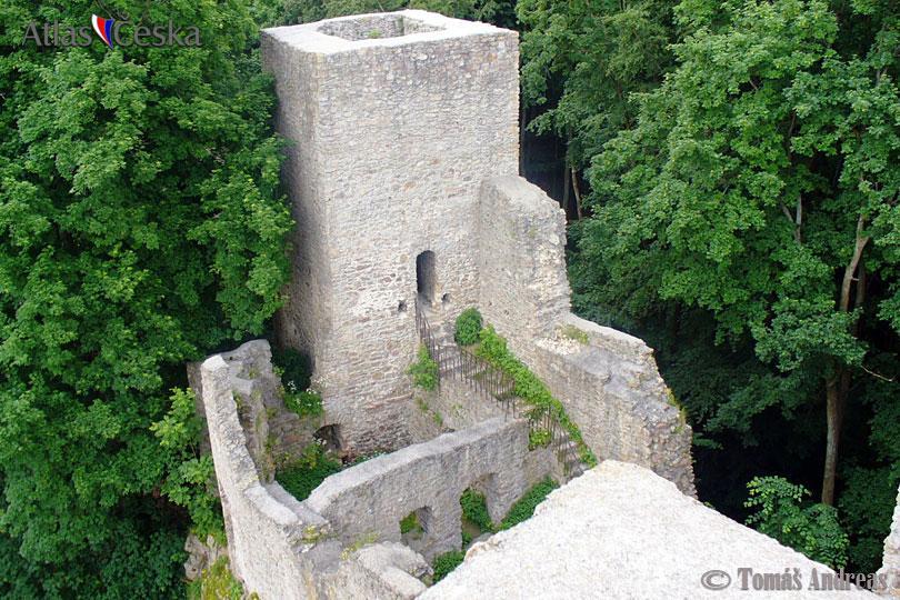 Zřícenina hradu Choustník