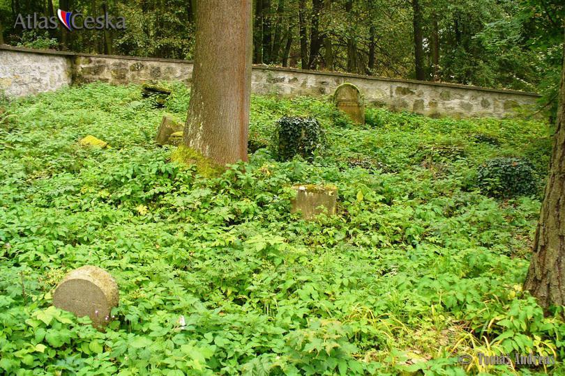 Židovský hřbitov Dolní Cetno
