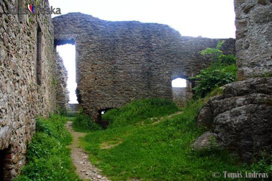 Zřícenina hradu Choustník -
