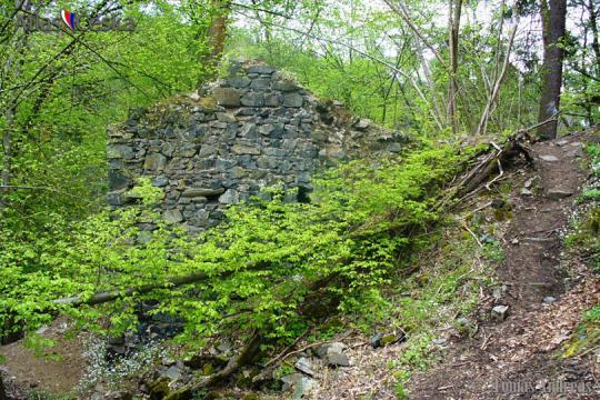 Zřícenina hradu Kozí hřbet -