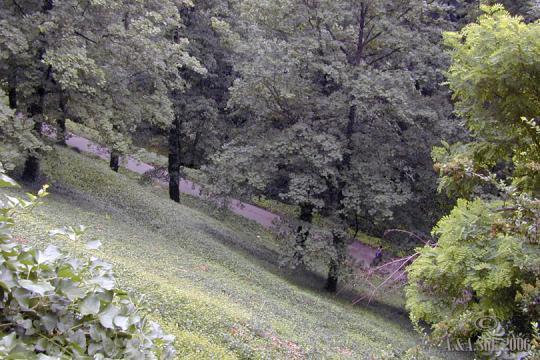 Zahrada Královská -