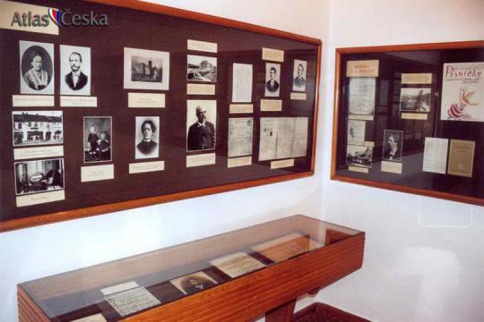 Památník Vítězslava Nováka - Skuteč -