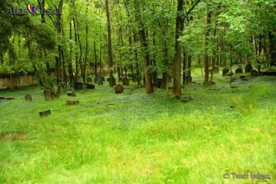 Židovský hřbitov - Telice -