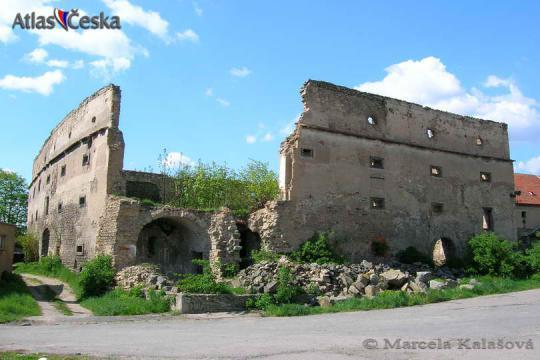 Zřícenina tvrze Vyšehořovice -