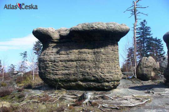 Slavěnské kamenné hřiby -