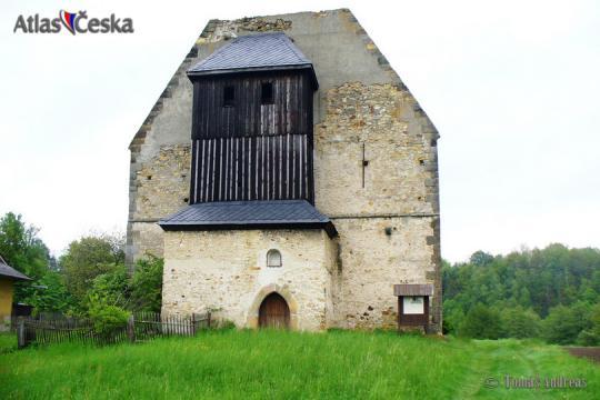 Zřícenina kláštera Koruna Panny Marie - Krasíkov -