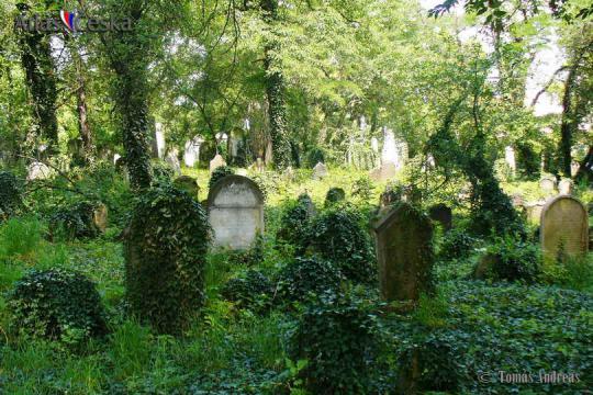 Old Jewish Cemetery in Kolín -