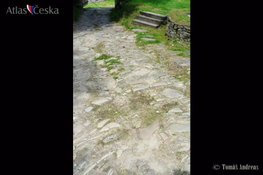 Brumov Castle Ruin -