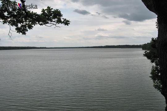 Rybník Rožmberk -