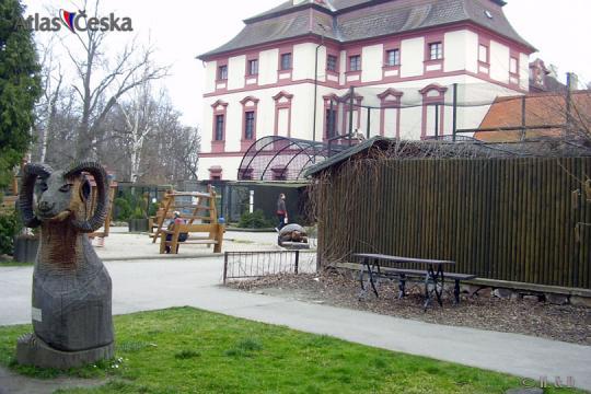 ZOO Hluboká nad Vltavou -