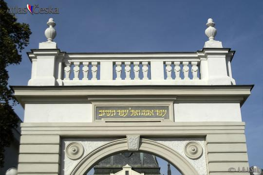 Nový židovský hřbitov na Olšanech -