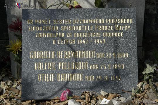 Herrmannová Gabriela -