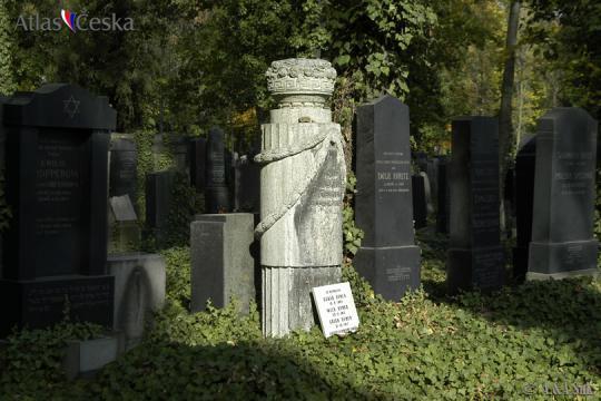 Ofner Oskar -